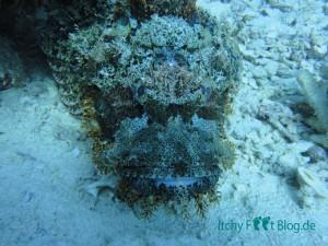 Ägypten - Hurghada - itchyfeetblog.de