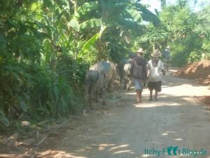 Straßen zwischen Kuta und Mawun Beach