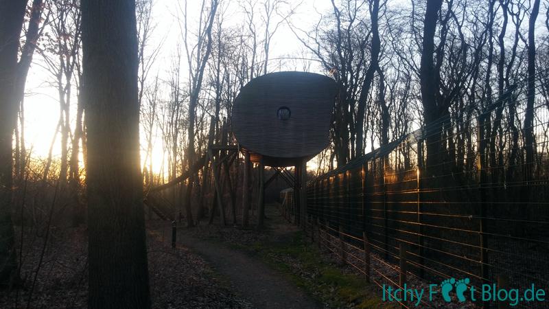 Wolfcenter Dörverden - TreeIn Baumhaus